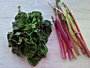 kale_and_chard_salad