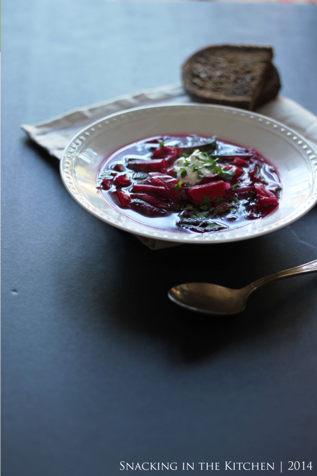 Borscht Russian Beet Soup Recipe13