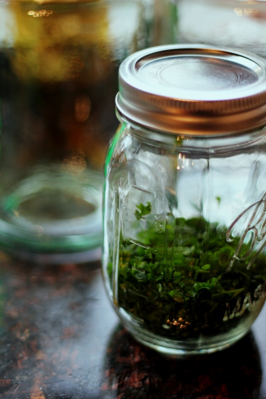 How to Preserve Herbs ~ Freezing3