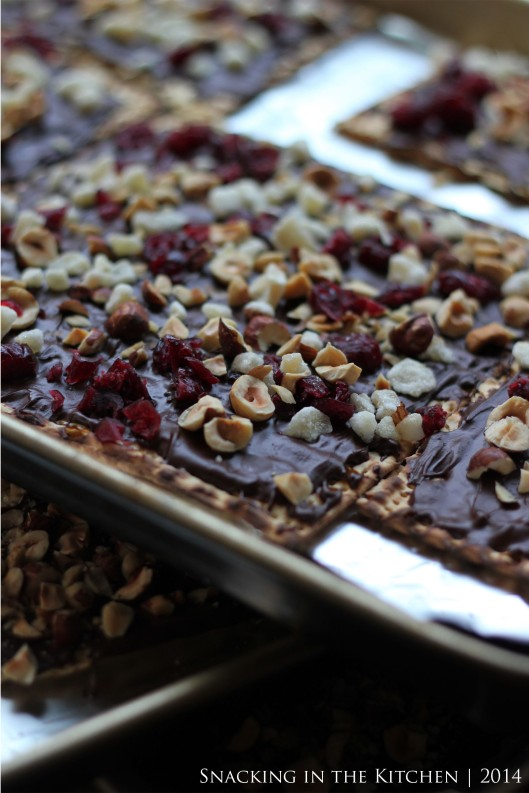 Passover Chocolate Covered Matzo with Hazelnuts, Cranberries and Ginger06
